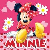 TTP Polštářek Minnie pinkie