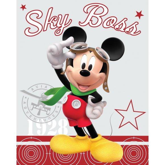 TTP Fleecová deka Mickey